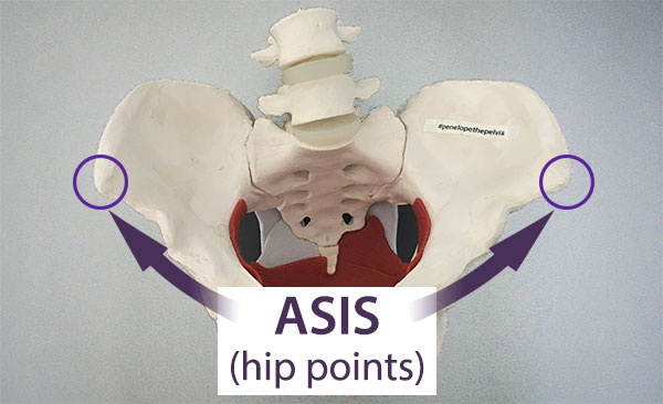 ASIS, also known as hip points or anterior superior iliac spine